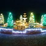 鳴門市の海が見えるリゾートホテルで電飾の点灯式がありました。 ・十二月前に電飾点灯す(和良)