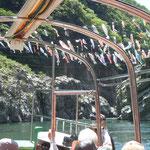 観光船から見た鯉のぼりです。爽やかな風に泳いでいました。                ・大歩危は風の渓谷五月鯉(和良)