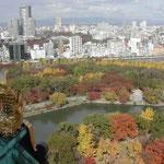 豊臣秀吉が築いた大阪城の天守閣に登って紅葉を見てきました。  ・太閤に見せたき紅葉錦かな (和良)