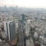 渋谷スカイから見た東京タワーの方面です。スカイツリーも見えました。・小春日の東京の街見下ろして(和良)