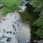 吉野川市の美郷ほたる館前の川岸で河鹿を聞きました。         ・蛍を川辺に待てば河鹿鳴く(和良)
