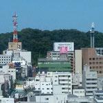 徳島市内にある銀行の本店10階から眺望した城山です。  ・城山は子らの遊び場赤蜻蛉(和良)