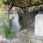 深大寺の虚子の句碑の隣には虚子の像が立てられていました。  ・虚子しのぶ小春日和の深大寺(和良)