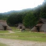 徳島市の史跡公園でほととぎすが鳴いていました。           ・ほととぎす鳴かぬ鳴かぬと待てば鳴く(和良)