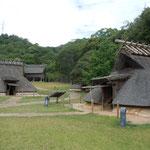 徳島市国府町の阿波史跡公園には竪穴住居や高床倉庫などがありました。        ・万緑の中に竪穴住居かな(和良)