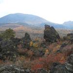 群馬県嬬恋村にある鬼押出は浅間山噴火のときの溶岩が固まってできました。      ・むき出しの鬼押出も紅葉して(和良)