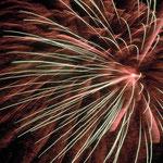 青春時代を過ごした浜松で久しぶりに弁天島の花火を見てきました。      ・浜風の弁天島の花火かな(和良)