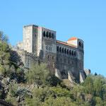 レイリア市にはローマ時代の古城が街の真ん中に聳えていました。 ・レイリアに古城ありけり秋高し(和良)