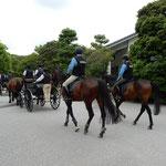 鍛錬から帰った馬車の馬体には汗が浮かび艶がありました。       ・いよいよに艶やかなりし汗の馬(和良)