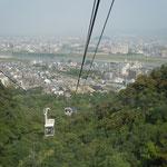 岐阜城のロープウエイです。万緑の中を登ってきます。                                 ・万緑にロープウエイの呑み込まれ(和良)