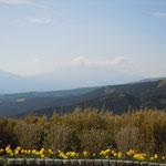 十国峠にケーブルカーで上りました。雲がありましたが富士山も見えました。        ・足下より鶯を聞く峠かな(和良)