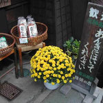 古い町並みが続く上三之町では、家ごとに菊を咲かせていました。  ・高山の古き町並み菊明かり (和良)