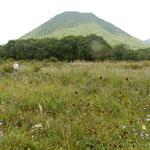 榛名山の裾の花野には吾亦紅と松虫草が見られました。         ・吾亦紅松虫草と火山灰の道(和良)