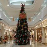 藍住町のショッピングモールでクリスマスツリーを見ました。      ・ショッピングモール早々聖樹立つ(和良)