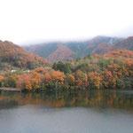 美馬市脇町の夏子ダムで見た冬紅葉です。湖面にも映っていました。 ・つくづくと阿波は南国冬紅葉(和良)