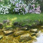 吉野川市の江川湧水源では滾々と清水が湧いていました。          ・泉とは水湧き命湧くところ(和良)