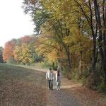 「森の散歩は正装で」というのがウィーンの方々の気質と聞きました。 ・紅葉の道行く紳士淑女かな (和良)