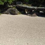 石庭の砂の綺麗な箒目が秋の日差に浮かび上がっていました。 ・石庭の箒目しかと秋日指す(和良)