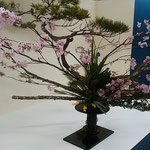 徳島駅前のデパートで春の生花展が開かれていました。  ・春を呼ぶ生花展の明るさよ(和良)