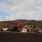 長野県上田市菅平高原は海抜1200メートルにあります。清々しい朝でした。         ・高原の朝の光や冬紅葉(和良)