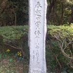 眉山山頂の松本巨草さんの句碑の周りは草が刈られていました。 ・句碑の辺の綺麗に刈られ石蕗の花(和良)