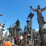 リトアニアのシャウレイにある十字架の丘です。            ・夏草の野に十字架の十万本(和良)