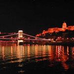 ドナウ川から見たブタペスト市内の夜景です。綺麗でした。 ・大夜景ドナウクルーズ火の恋し (和良)