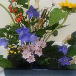 徳島市内のホテルで秋の花が並ぶ生花展を見てきました。   ・生花の中の桔梗の凛として(和良)