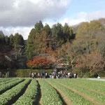 去来が住み、芭蕉が嵯峨日記を書いた京都の落柿舎に行ってきました。  ・尋ね来し嵯峨の落柿舎柿の秋 (和良)