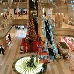 羽田空港の吹き抜けロビーには聖樹が飾られていました。          ・空港のロビーはやばや大聖樹(和良)
