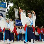 高知市の高知城下でよさこい踊を見てきました。              ・残暑吹き飛ばすよさこい踊かな(和良)
