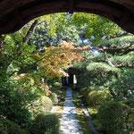 犬山上の城下にある有楽苑の国宝の茶室・如庵を訪ねました。                ・国宝の茶室への道初黄葉(和良)