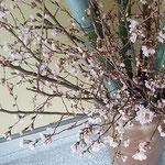 藍住町の日本料理店では盛り塩された玄関に桜が活けられていました。  ・盛り塩のされし玄関初桜(和良)