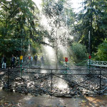 ピョートル大帝の夏の宮殿の庭園にはいろいろな噴水がありました。   ・木の実踏み大帝公の庭めぐる(和良)