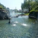 鴨島公園には湧き水である江川が流れ、噴水もありました。       ・涼風はやって来るもの待ちましょう(和良)