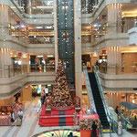 羽田空港のロビーに今年もクリスマスツリーが立っていました。 ・空港のロビー早々聖樹立つ(和良)
