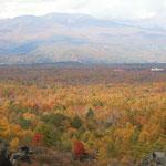 浅間山の麓にある鬼押出からの眺望です。遥か彼方まで黄葉が続いていました。     ・浅間山野山の錦果てもなく(和良)