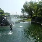 吉野川市の鴨島公園は江川の岸辺にあり水の公園として人気があります。 ・噴水もミストも上がる岸辺かな(和良)