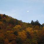 中里介山の小説「大菩薩峠」で五彩絢爛と謳われた白骨温泉の紅葉です。                    ・紅葉の山の端にあり昼の月(和良)