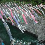 連休に大歩危峡に行ってきました。鯉幟が見事でした。 ・大歩危の淵の藍濃し五月鯉(和良)
