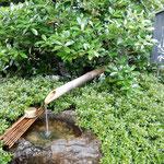 石川酒造では仕込水として地下から清水を汲み上げていました。     ・奥多摩の清水を汲みて酒造る(和良)