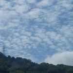 秋の雲は鰯雲から鯖雲へと次から次に変わっていきました。  ・鰯かも鯖かも秋の雲高し(和良)