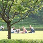 皇居東御苑の広場では外国人の若者が日光浴を楽しんでいました。         ・外つ国の人は日焼けを楽しみて(和良)