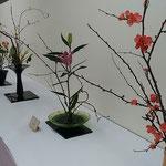 生花展にはいろいろな種類の春の花が並んでいました。  ・生花展巡れば春の香りして(和良)