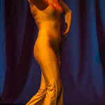 Bilder der Abend Show * Proserpina Nacht 2014 * Dresden