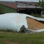 Silo de maïs grain à l'ouverture en juin 2015