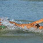 Caylie's erster Sprung ins Wasser