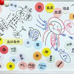 漢方、中医用語のマグネットを使ってホワイトボードで講座。