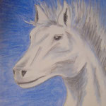 Pferd in blau. Pastell. DIN A 2