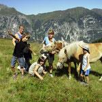 Die Pferdeflüsterer / I sussuri cavalli